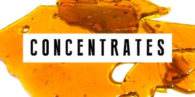 cbd-concentrates